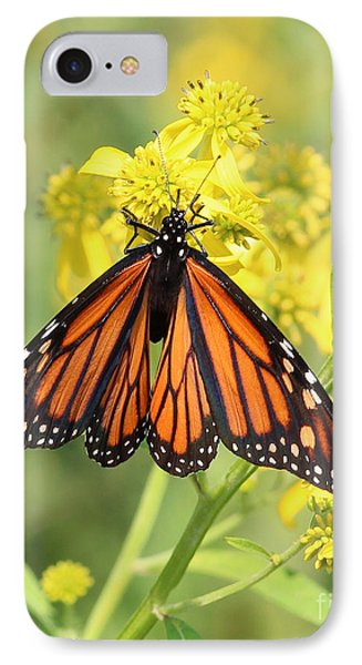 Lovely Monarch IPhone Case
