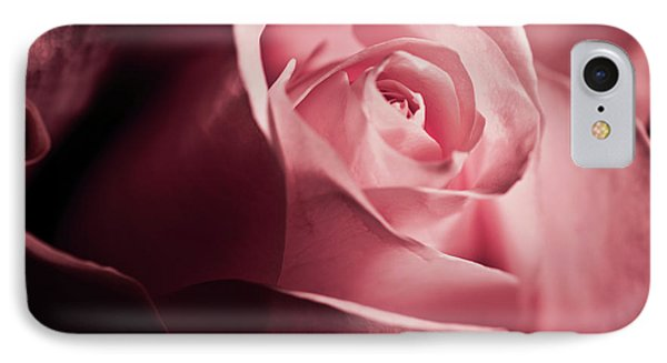 Lovely Pink Rose IPhone Case by Micah May