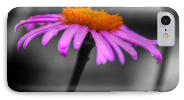 IPhone Case featuring the photograph Lovely Purple And Orange Coneflower Echinacea by Shelley Neff