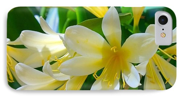 Lovely White And Yellow #flowers IPhone Case by Shari Warren
