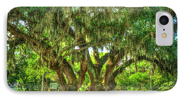 Lovers Oak Live Oak Tree Brunswick Georgia Art IPhone Case