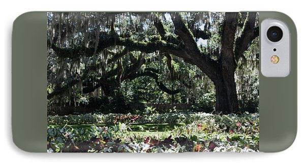 IPhone Case featuring the photograph Low Country Series I by Suzanne Gaff