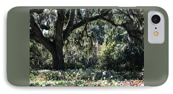 IPhone Case featuring the photograph Low Country Series II by Suzanne Gaff