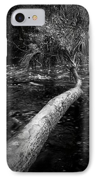 Low Palm IPhone Case by Marvin Spates