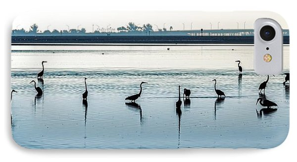 IPhone Case featuring the photograph Low Tide Gathering by Steven Sparks