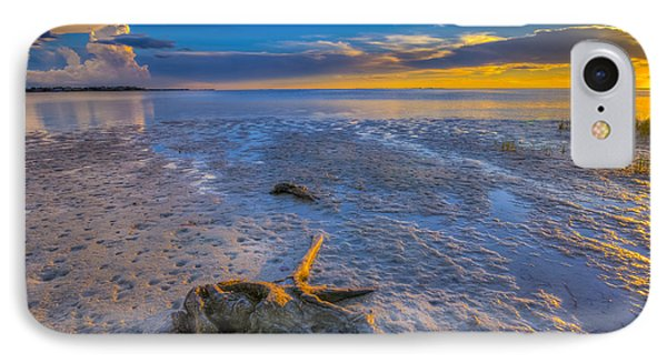 Low Tide Stump IPhone Case by Marvin Spates