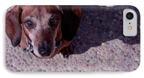 IPhone Case featuring the photograph Lucy by Lora Lee Chapman