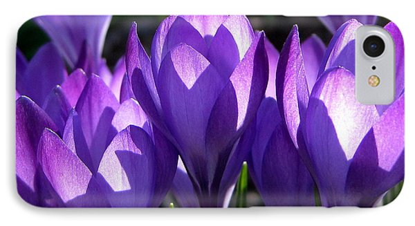IPhone Case featuring the photograph Luminous Floral Geometry by Byron Varvarigos