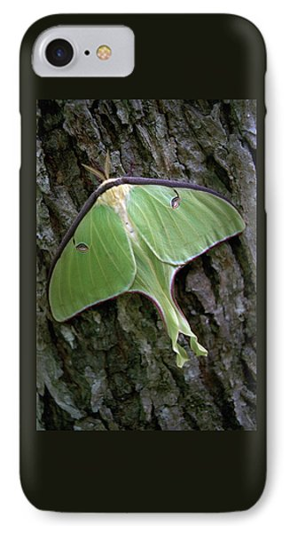 Luna Moth IPhone Case by Marie Hicks