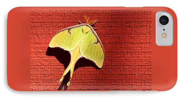 Luna Moth On Red Barn IPhone Case by Sheila Brown