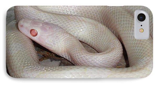 Luna White Snake IPhone Case