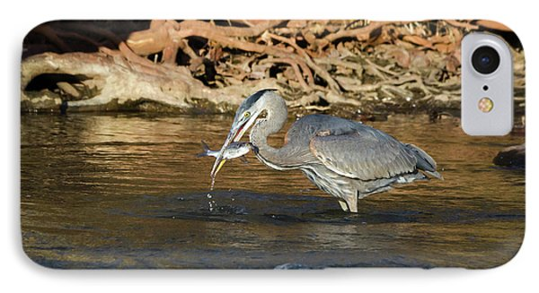 Lunch On The Neuse River IPhone Case by George Randy Bass