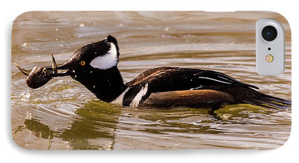 Lunchtime For The Hooded Merganser IPhone Case by Randy Scherkenbach