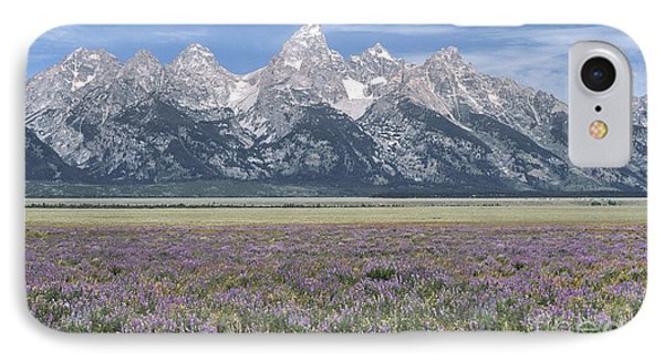 Lupine And Grand Tetons IPhone Case by Sandra Bronstein