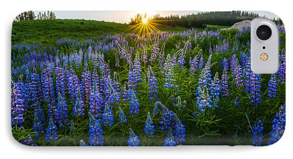 Lupine Meadow IPhone Case