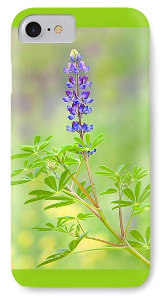IPhone Case featuring the photograph Lupine by Ram Vasudev