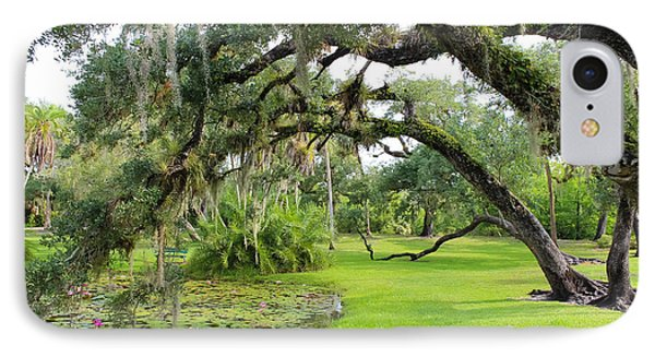 Lush Oak Arches IPhone Case by Liesl Walsh