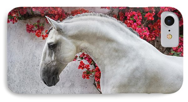 Lusitano Portrait In Red Flowers IPhone Case by Ekaterina Druz