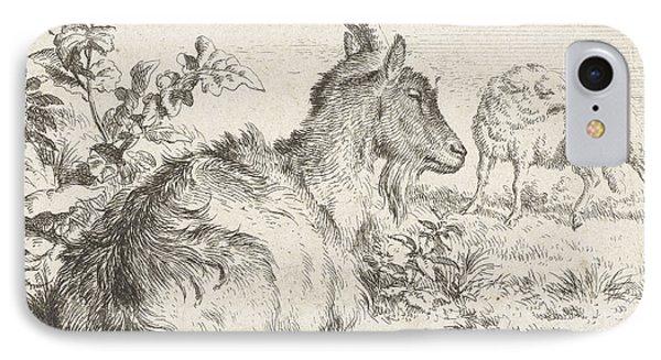 Lying Goat IPhone Case by Adriaen van de Velde