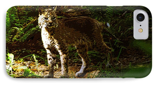 Lynx Rufus IPhone Case by David Lee Thompson
