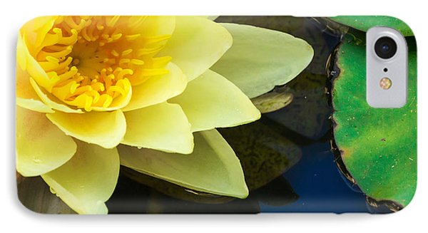 Macro Image Of Yellow Water Lilly IPhone Case by John Williams