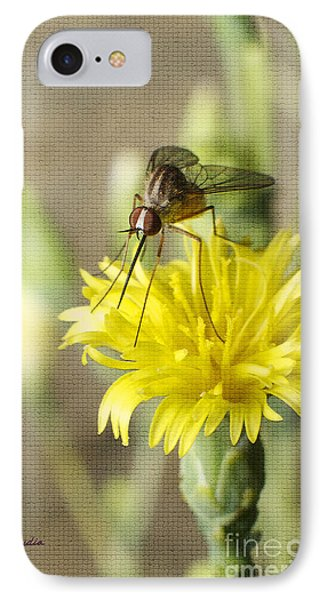 Macro Photography Of A Mosquito Over A Lettuce Flower IPhone Case by Claudia Ellis