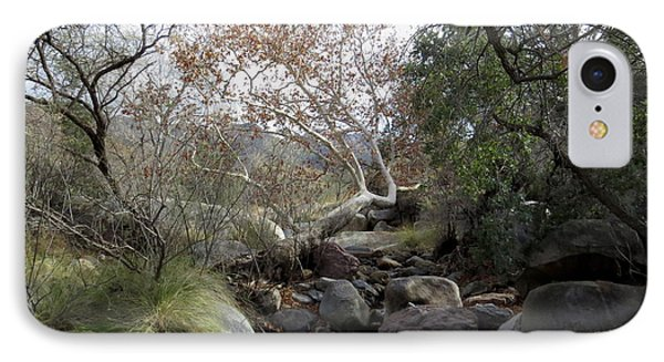 Madera Creek IPhone Case by Feva Fotos
