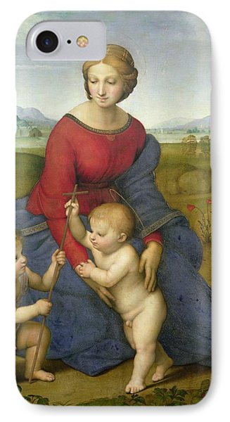 Madonna In The Meadow Phone Case by Raphael