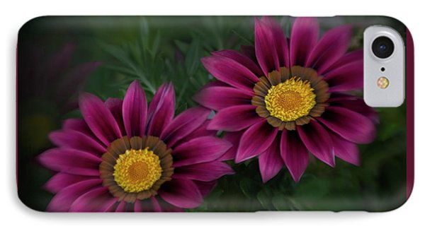 IPhone Case featuring the photograph Magenta African Daisies by David and Carol Kelly