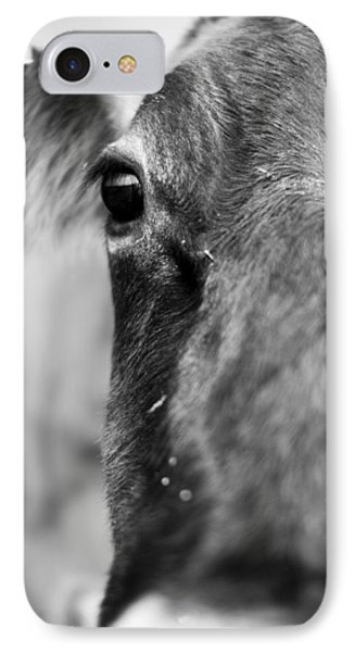 Maggie The Cow Abstract IPhone Case by Dustin K Ryan