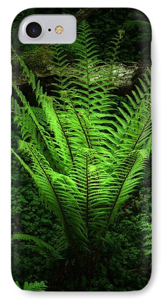 Magic Fern Phone Case by Svetlana Sewell