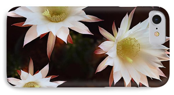 Magical Flower IPhone Case by Gina Dsgn