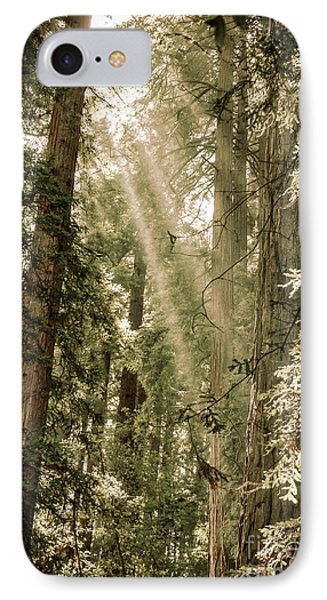 Magical Forest 2 IPhone Case by Ana V Ramirez