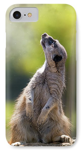 Meerkat iPhone 7 Case - Magical Meerkat by Jane Rix