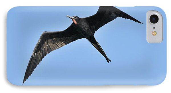 IPhone Case featuring the photograph Magnificent Frigatebird In Flight by Bradford Martin