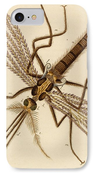 Magnified Mosquito IPhone Case by German School