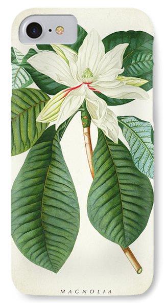 Magnolia Botanical Print Magnolia02 IPhone Case by Aged Pixel