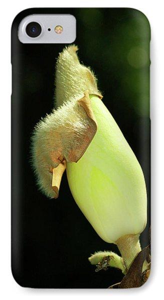Magnolia Bud Phone Case by Deborah Benoit