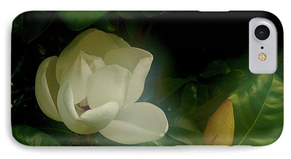 Magnolia IPhone Case by Evelyn Tambour