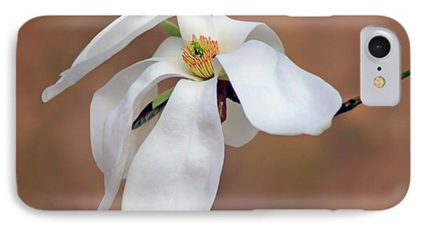 IPhone Case featuring the photograph Magnolia Grace by Nikolyn McDonald