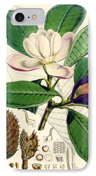 Magnolia Hodgsonii IPhone Case