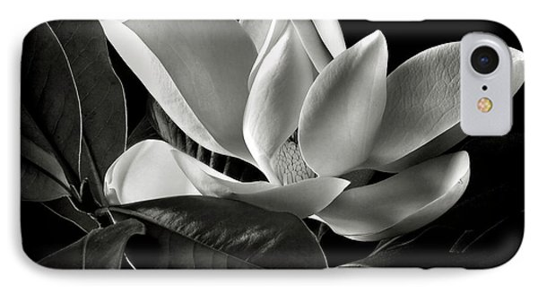 Magnolia In Black And White IPhone Case by Endre Balogh