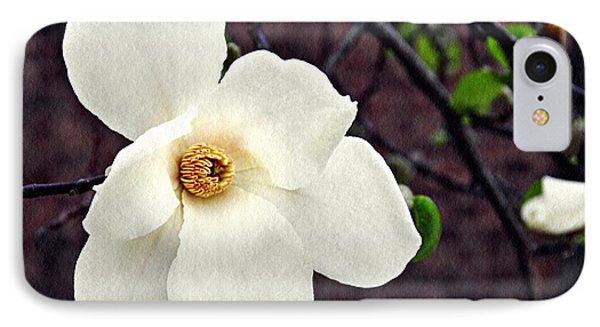 Magnolia Memories 2 IPhone Case by Sarah Loft