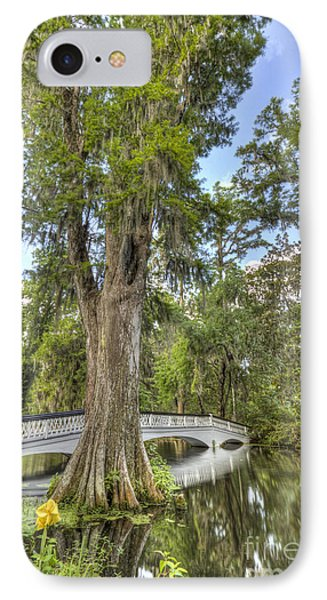 Magnolia Plantation Cypress Tree Phone Case by Dustin K Ryan