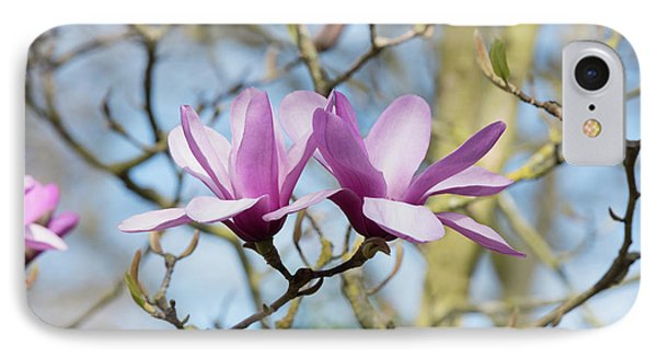 IPhone Case featuring the photograph Magnolia Serene Flowers by Tim Gainey