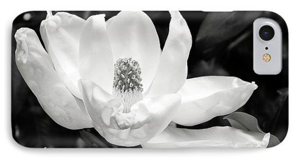 Magnolia Strong- By Linda Woods IPhone Case by Linda Woods