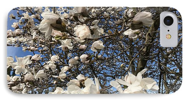 IPhone Case featuring the photograph Magnolia Tree In Blossom by Patricia Hofmeester