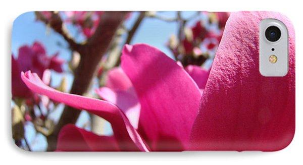 Magnolia Tree Pink Magnoli Flowers Artwork Spring Phone Case by Baslee Troutman