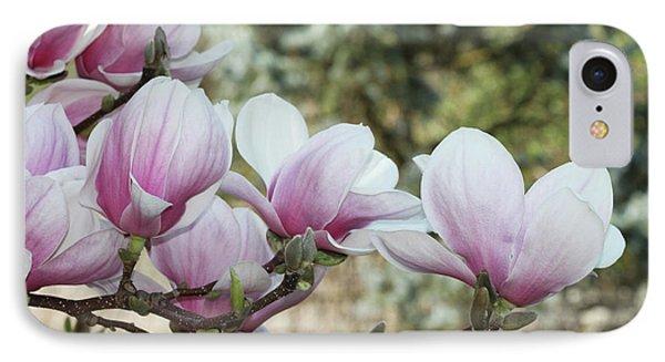 Magnolias #3 IPhone Case