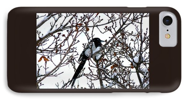 IPhone Case featuring the photograph Magpie In A Snowstorm by Will Borden